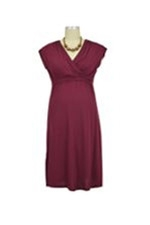 Twinkle Nursing Dress (Wine) by Dote