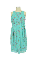 Spring Carmene Bird Print Nursing Dress (Mint Print) by Spring Maternity