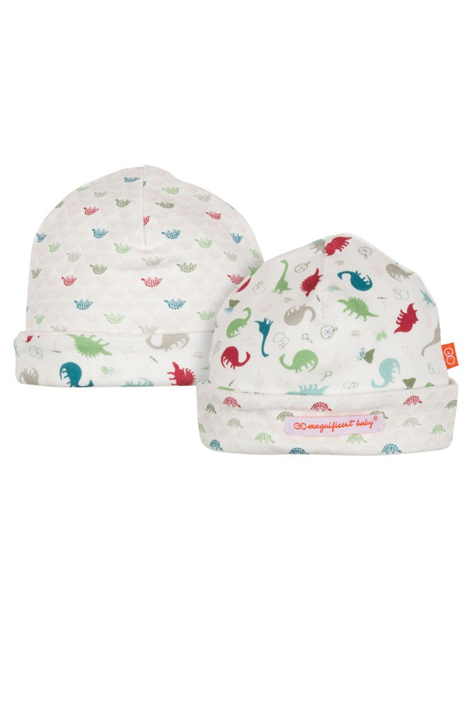 Magnificent Baby Reversible Baby Boy Cap (Dino Expedition)